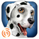 DogWorld 3D: My Dalmatian - the cute puppy dog - Carnival's edition